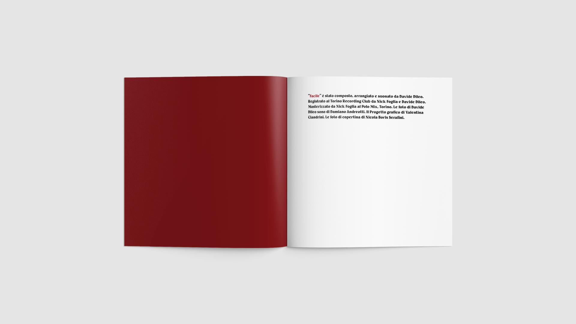 2 boosta davide dileo subsonica valentina ciandrini ciandreamy packaging graphic design